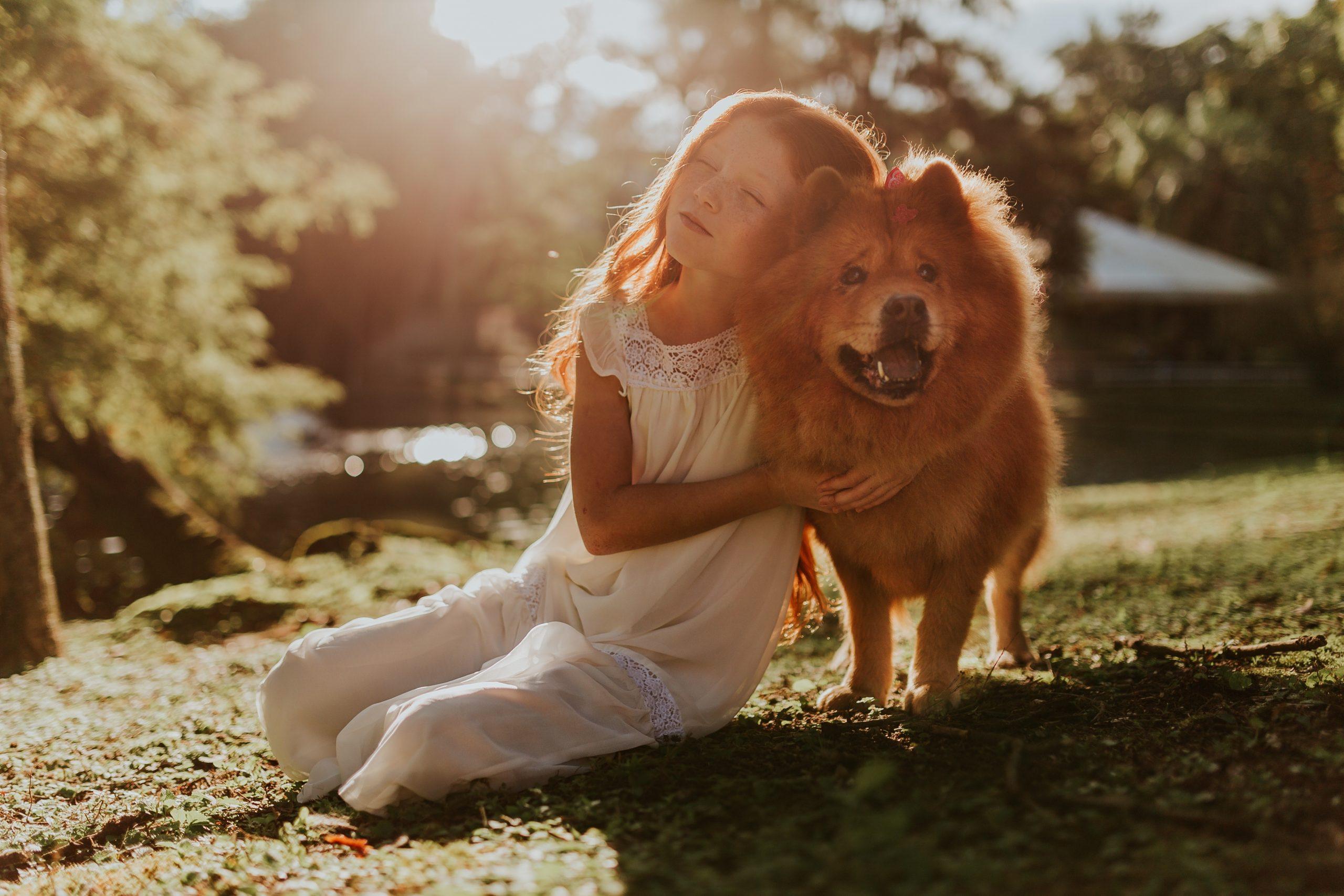 convivência entre cachorros e crianças